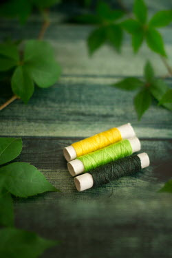 Nilufer Barin THREE COTTON REELS AND GREEN LEAVES Miscellaneous Objects