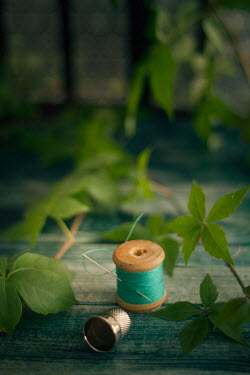 Nilufer Barin COTTON REEL, THIMBLE AND GREEN LEAVES Miscellaneous Objects