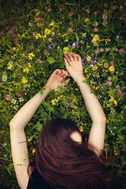 Svetlana Bekyarova WOMAN LYING IN WILD FLOWERS Women