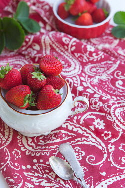 Isabelle Lafrance PICNIC OF STRAWBERRIES ON PINK TABLECLOTH Miscellaneous Objects