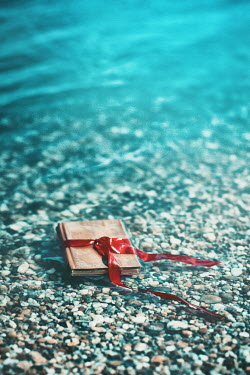 Ildiko Neer BOOK FLOATING IN SEA WITH RED RIBBON Seascapes/Beaches