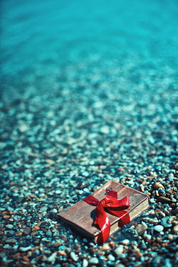 Ildiko Neer SMALL BOOK FLOATING IN SEA Seascapes/Beaches