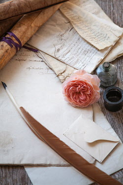 Jan Bickerton QUILL, INK, LETTERS AND FLOWER ON TABLE Miscellaneous Objects