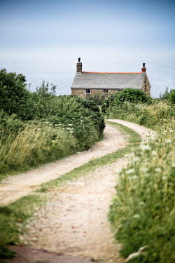 Jan Bickerton COTTAGE AND COUNTRY LANE IN SUMMER Houses