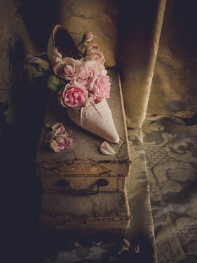 Jane Morley WOMANS VINTAGE SHOE AND ROSES Miscellaneous Objects