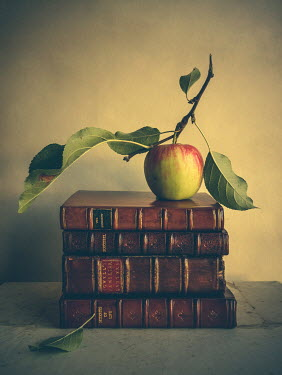 Jane Morley GREEN APPLE ON ANTIQUE BOOKS Miscellaneous Objects