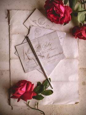Jane Morley VINTAGE HANDWRITTEN LETTER AND RED ROSES Miscellaneous Objects