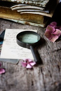 Galya Ivanova MAGNIFYING GLASS, LETTERS AND FLOWERS Miscellaneous Objects