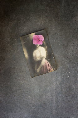 Galya Ivanova FLOWER COVERING WOMANS FACE IN VINTAGE PHOTO Miscellaneous Objects