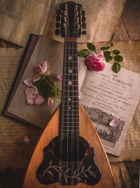 Jane Morley LUTE WITH ROSES, MANUSCRIPTS AND SONG BOOK Musical Instruments