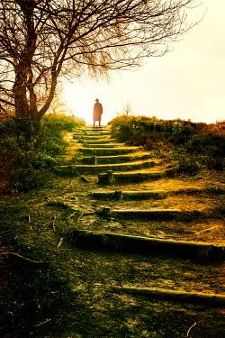 Yolande de Kort SILHOUETTE OF MAN ON COUNTRYSIDE STEPS Men