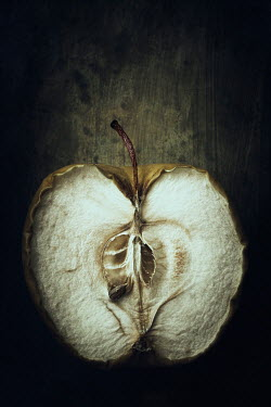 Amy Weiss ROTTEN DRIED APPLE SLICED IN HALF Miscellaneous Objects