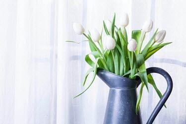 Jean Ladzinski WHITE FLOWERS IN PEWTER JUG Flowers