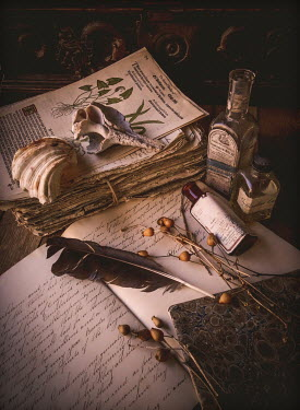 Jane Morley BOTANICAL NOTEBOOKS, BOTTLES AND FEATHERS Miscellaneous Objects