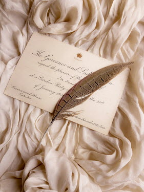 Jane Morley feather and grand party invitation Miscellaneous Objects