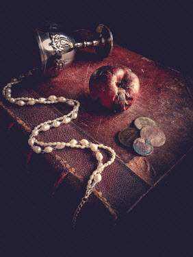 Jane Morley ROTTEN APPLE, NECKLACE, COINS AND BOOK Miscellaneous Objects