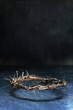 Stephanie Frey CROWN OF THORNS Miscellaneous Objects