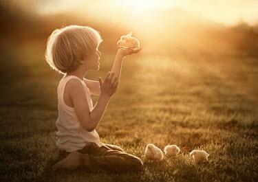 Sveta Butko LITTLE BOY WITH CHICKS IN FIELD AT SUNRISE Children