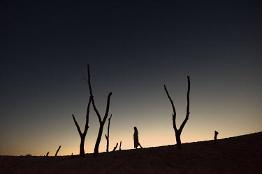 Terry Bidgood SILHOUETTE OF WOMAN AND TREES IN DESERT Women