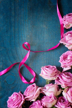 Galya Ivanova HOT PINK ROSE FLOWERS AND RIBBON Flowers