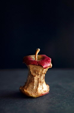 Isabelle Lafrance CLOSE UP OF BROWNED APPLE CORE Miscellaneous Objects