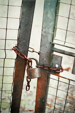 Benjamin Harte RUSTY LOCK AND CHAIN ON METAL GATE Gates