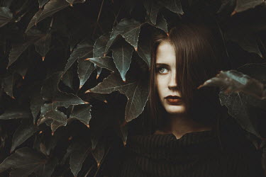 Oana Stoian SERIOUS GIRL WATCHING FROM HEDGE Women