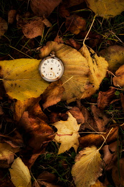 Sally Mundy RUSTY POCKET WATCH ON AUTUMN LEAVES Miscellaneous Objects