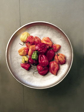 Allan Jenkins SCOTCH BONNET CHILLIES ON SILVER DISH Miscellaneous Objects