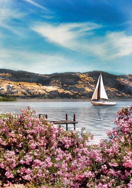 Jill Battaglia YACHT SAILING ON LAKE WITH PINK FLOWERS Boats