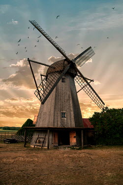 Jaroslaw Blaminsky WOODEN WINDMILL AT SUNSET WITH BIRDS Miscellaneous Buildings