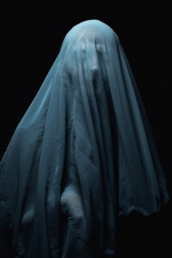 Chad Michael Ward WOMAN COVERED WITH GREY SILK VEIL Women