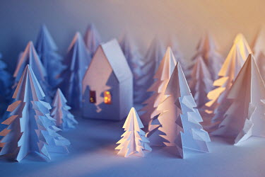 Jasenka Arbanas MODEL HOUSE AND TREES IN FOREST Miscellaneous Objects