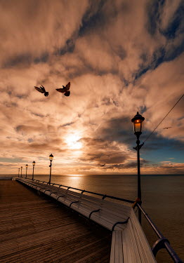 Tony Watson EMPTY PROMENADE WITH BIRDS AT SUNSET Seascapes/Beaches