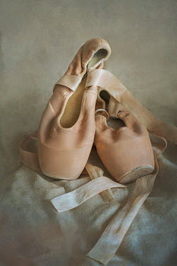 Jaroslaw Blaminsky PAIR OF BALLET SHOES Miscellaneous Objects