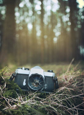 Mark Owen CAMERA WITH BROKEN LENS IN FOREST Miscellaneous Objects