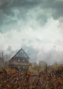 Drunaa farm house in cornfield Houses