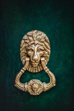 Evelina Kremsdorf GOLD LION DOOR KNOCKER Building Detail