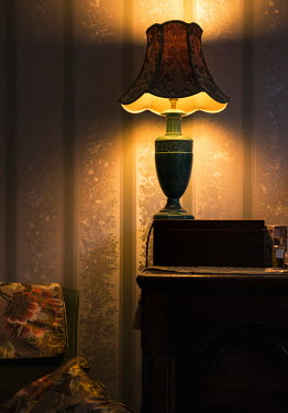 Jaroslaw Blaminsky INTERIOR WITH RETRO LAMP AT NIGHT Interiors/Rooms