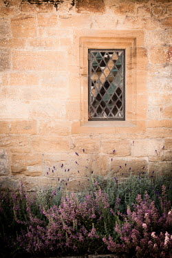 Jan Bickerton LEADED WINDOW IN OLD SANDSTONE HOUSE Building Detail
