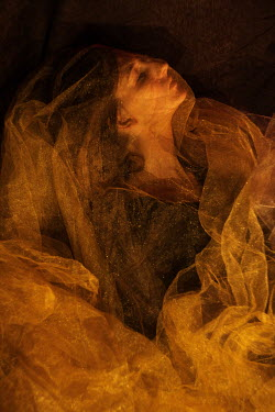 Daria Amaranth MYSTERIOUS WOMAN COVERED WITH GOLD SILK Women