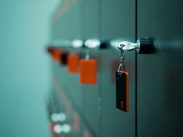Brian Law ROW OF LOCKERS WITH KEYS Miscellaneous Objects