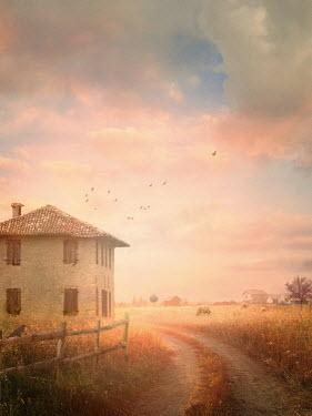 Drunaa FARMHOUSE IN SUMMERY LANDSCAPE Houses