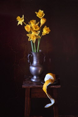 Magdalena Wasiczek DAFFODILS AND PEELED LEMON ON TABLE Flowers