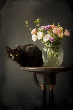 Magdalena Wasiczek BLACK CAT ON TABLE WITH VASE OF FLOWERS Animals