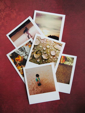 Isabelle Lafrance POLAROIDS ON RED DAMASK FABRIC Miscellaneous Objects