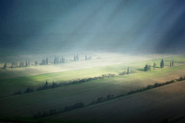 Paul Grand FIELDS WITH SUNBEAMS AND TREES Fields