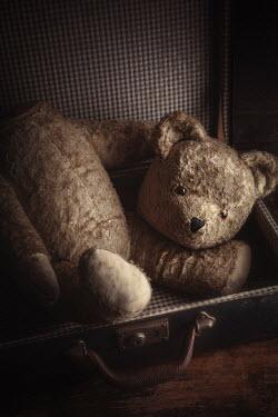 Amy Weiss BROKEN VINTAGE TEDDY BEAR IN SUITCASE Miscellaneous Objects