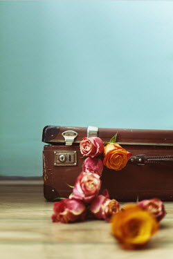 Svetoslava Madarova VINTAGE SUITCASE WITH ROSES INDOORS Miscellaneous Objects