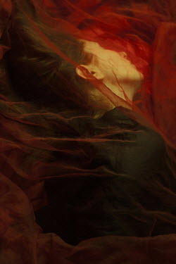 Daria Amaranth WOMAN LYING UNDERNEATH RED CHIFFON Women